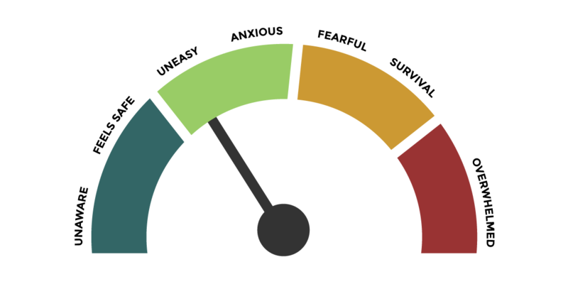 "An anxiety pressure gauge. From left-to-right, it shows a blue area, green area, yellow area and red area. The labels beside each, from left-to-right are: unaware, feels safe, uneasy, anxious, fearful, survival, and overwhelmed. The arrow is at the green ""uneasy"" area."